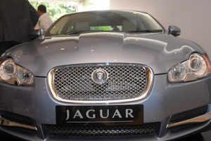 Jaguar_bccl