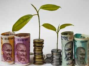 sbi bluechip fund should i invest in sbi bluechip fund