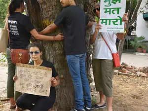 Delhi-trees