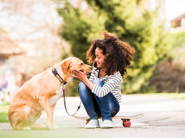 Gadgets to keep your pet safe, healthy