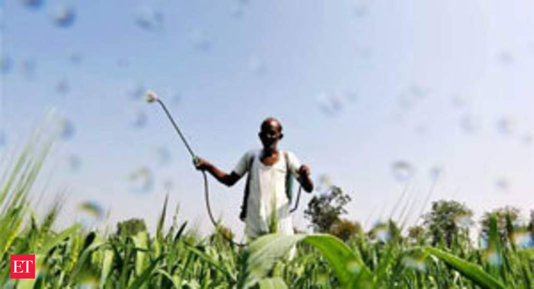 Government may hike paddy MSP by Rs 200/quintal - The