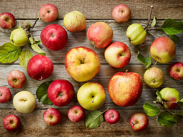 Do not eat apples as you wish. There is a timing for that.