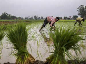 farmers-PTI2