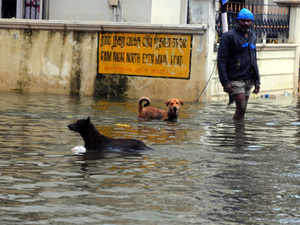 Chennai-flood-bccl