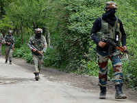 Two militants killed in Jammu and Kashmir's Shopian