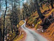 Head to Hatu Peak from Delhi, Malshej Ghat from Mumbai for the long-weekend