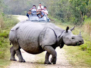 Special Rhino Protection Force