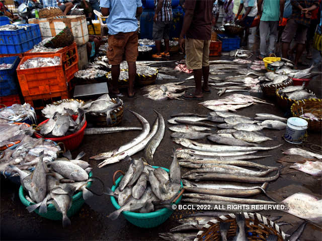 What happens when you eat fish laced with formalin - Fish