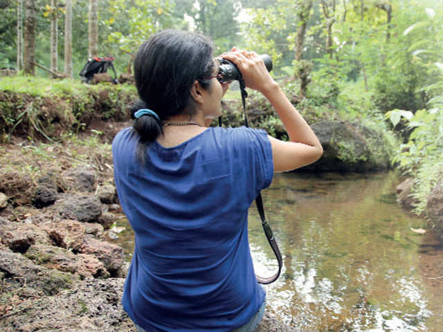 Head to the Western Ghats for fulfilling your bird watching dreams