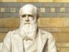 Give it to Darwin
