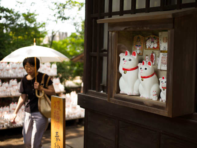 lucky cat' temple4