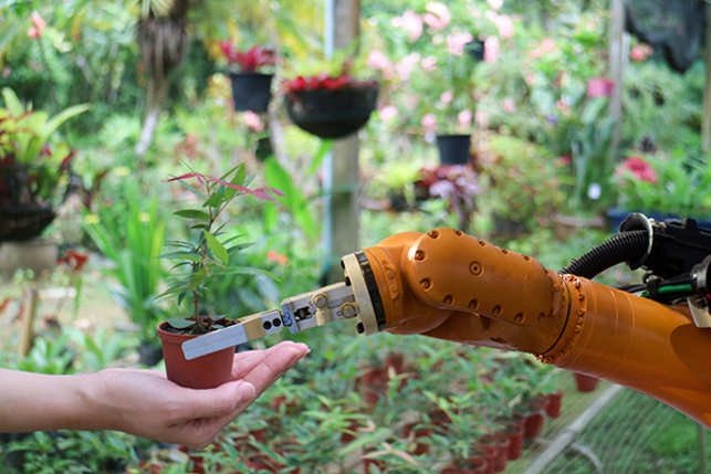 robot-gardening-AI-GettyImages-850636240