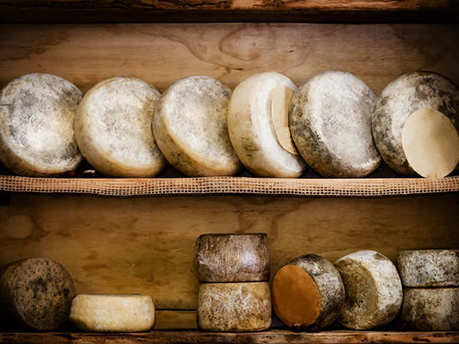 cheese-food-eat-GettyImages-852829768