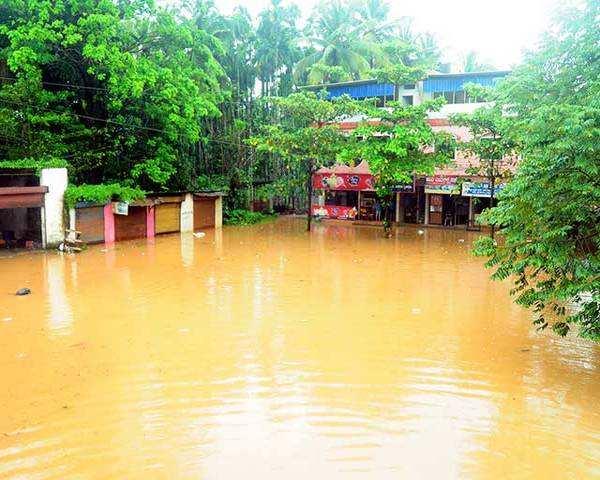 Image result for karnataka floods