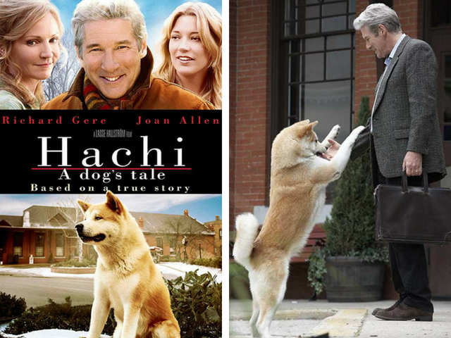 hachiko a dogs story full movie youtube