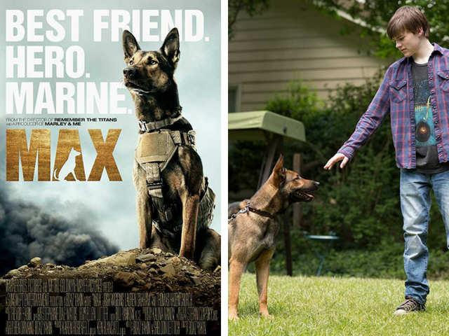 Max (2015) - International Dog Day: 6 Heartwarming Hollywood ...