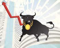 Bull-_-Thinks