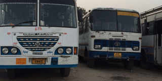 Haryana roadways website down