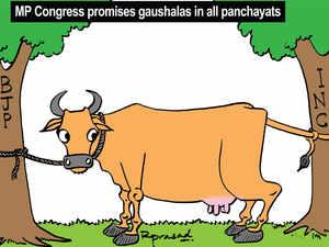 mp congress chief kamal nath promises gaushalas amid bjp s gau sadan