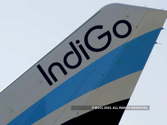IndiGo, SpiceJet eye cargo business - The Economic Times