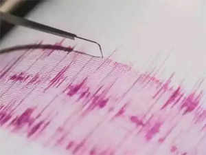 earthquake-Agenxies