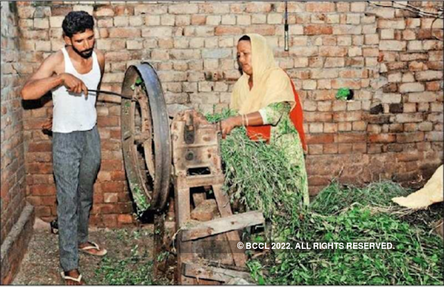 Farmer borrows Rs 200 to buy lottery ticket, wins Rs 1 5