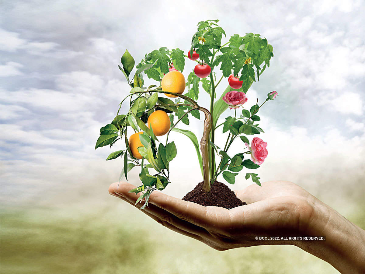 horticulture: As a horticulture boom pushes up farm incomes