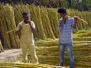 Modi cabinet to consider more sops for sugar sector on Wednesday