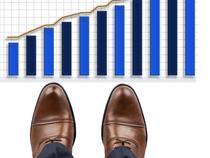 Footwear stock price: Footwear stocks