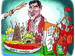 hindu-stand-BCCL