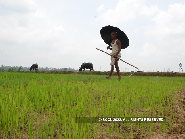 et view step up farm investment rationalise subsidies the