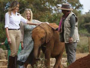 Watch: Melania Trump feeds elephant in Kenya