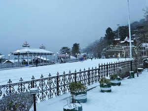 Shimla-bccl