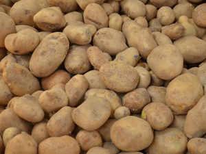 Potato-bccl