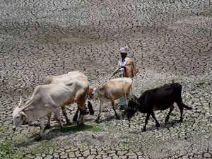 drought-agencies