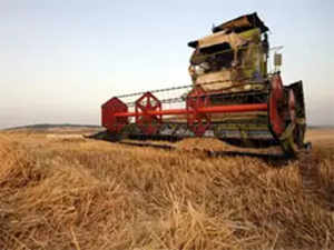 export-agri-agencies