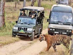 Park-safari-bccl