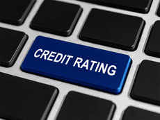 Fund houses should stop relying on 'scapegoat services' of credit rating agencies