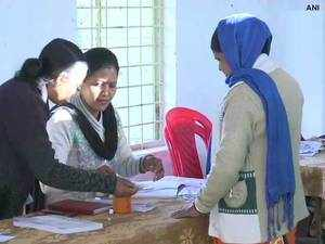 Chhattisgarh Elections: Voting for second phase starts amid tight security