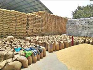 procurement-indi