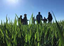 crops-reuters