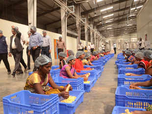 food processing_bccl