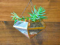 Give your home a green makeover: Plants, handcrafted pots & planters from Qtrove.com offer the ideal solution