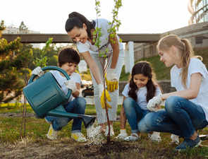 Plant another tree: Living in greener neighbourhoods linked to lower risk of heart disease