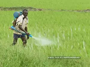 According To The Data Country Imported 42 03 Lakh Tonne Of Urea For Usd 1 048 59 Million Till November This Fiscal
