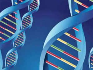 DNA_Agnencies