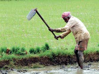 Government may hike agri credit target to Rs 12 lakh crore
