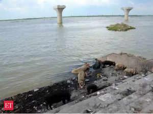 Ganga-Clean-Up