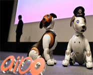 Sony offers robocop dog at home