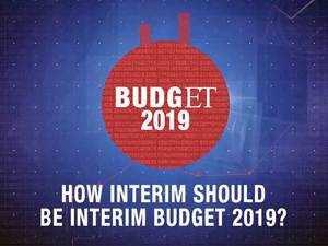 How interim should be Interim Budget 2019?